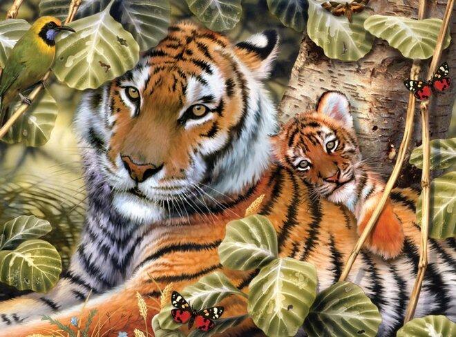 Malování podle čísel – Tygr a mládě