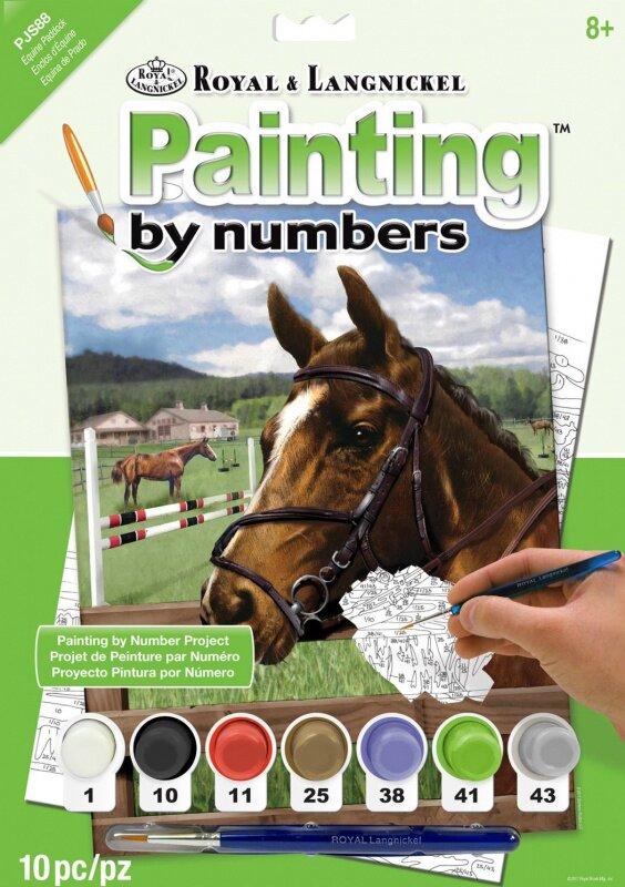 Malování podle čísel – Kůň v ohradě