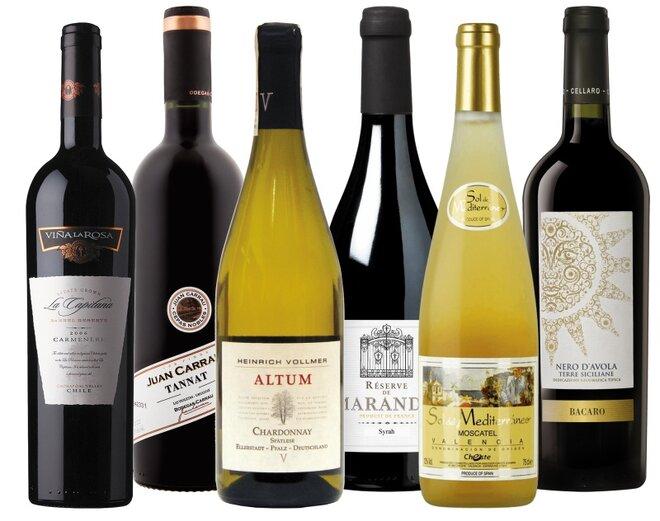 Sada 6 vín