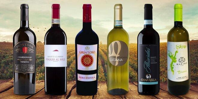 Italská vína z malých vinařství, červené i bílé