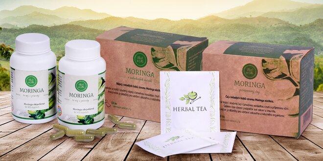 Superpotravina moringa v čaji i veganských kapslích