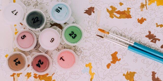 Malujte podle čísel: v sadě plátno, barvy a štětce
