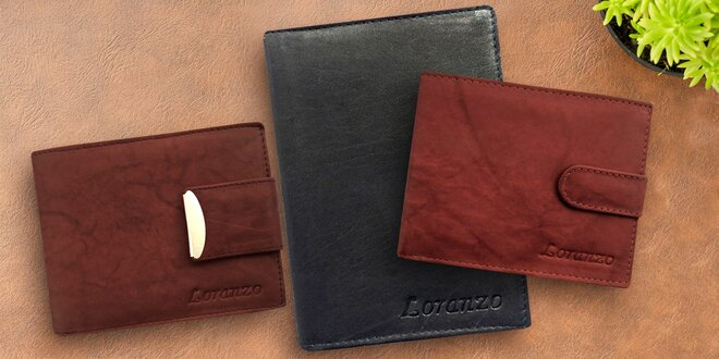 Kožené pánské peněženky a pouzdra na doklady