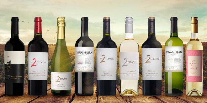 Sety argentinských vín po 1, 2 nebo 3 láhvích
