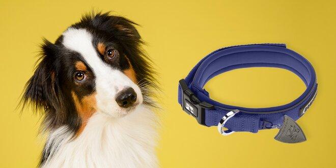 Nylonové obojky a vodítka pro psy: 4 barvy