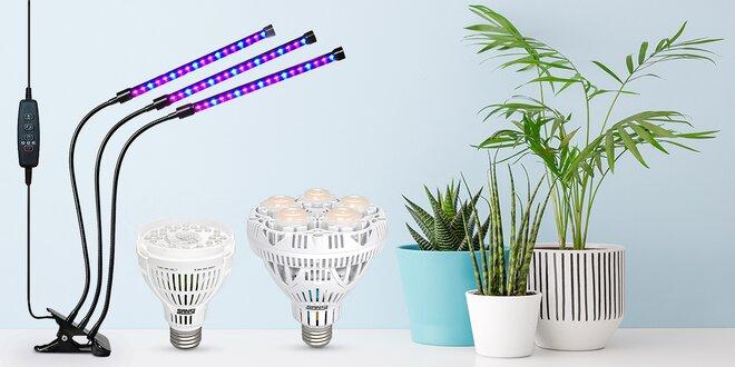 LED osvětlení i žárovky pro domácí pěstování rostlin