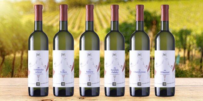 Dárkové sety 6 lahví z vinařství Mantis Mikulov