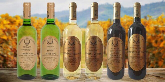 Set 4 bílých a 2 červených vín z vinařství Hlávka