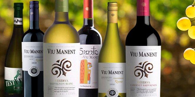 Šest luxusních vín z Chile