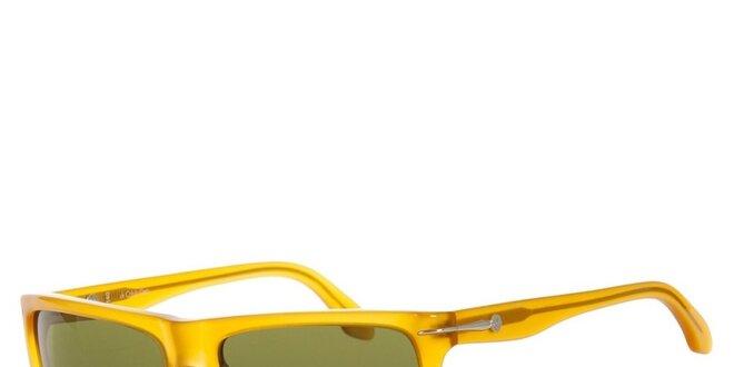 Pánské žluté sluneční brýle Calvin Klein