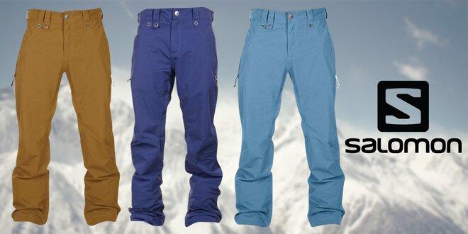 Pánské kalhoty Salomon na sportovní aktivity  b0aceb0f47