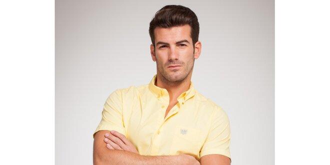 Pánská vanilkově žlutá košile Bendorff