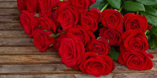 Kytice z ekvádorských růži v délce 60 cm