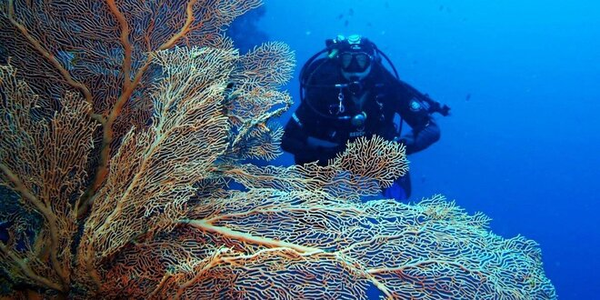 Silvestrovské potápění v Egyptě vč. letenky
