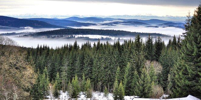 Hurá do hor: Pobyt na Šumavě s polopenzí pro 2