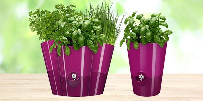 Květináč na bylinky se samozavlažovacím systémem