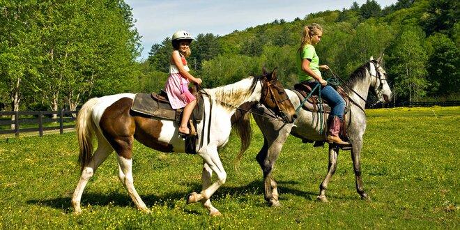 Každý den v sedle: příměstský tábor u koní
