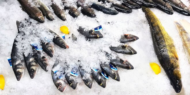 Kilo ryb na gril: pstruh, mořský vlk či pražma