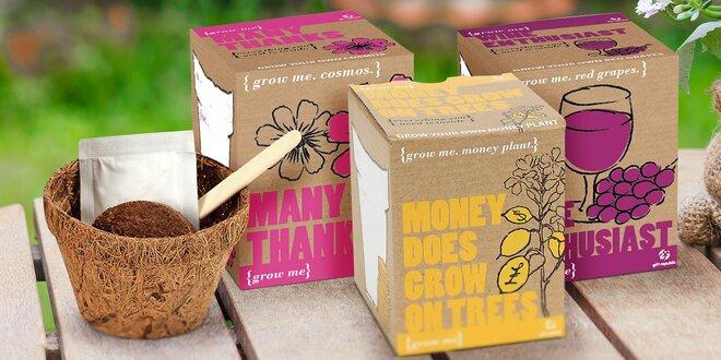 Grow me sada pro pěstování papriček, čaje nebo bazalky
