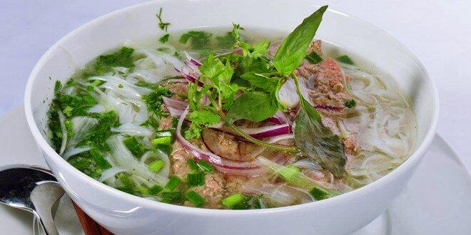 Vietnamská polévka s kuřecím nebo hovězím masem