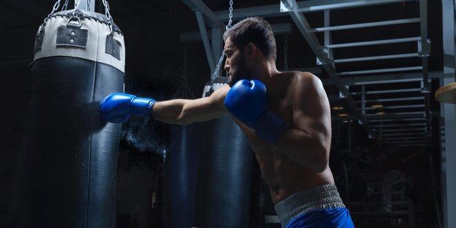 3 lekce kruhového tréninku, boxu nebo muay thai