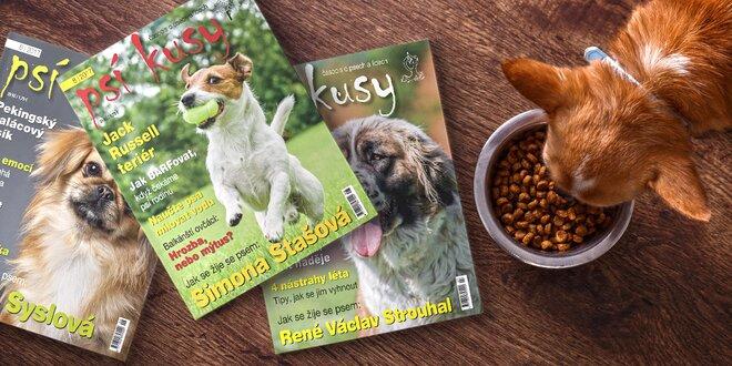 Roční předplatné časopisu Psí kusy