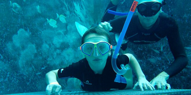 Potápění s vodním skútrem a seabikem