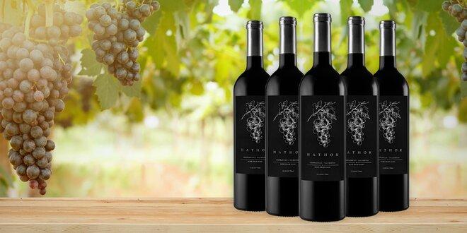Neodolatelné kvalitní víno ze srdce Španělska