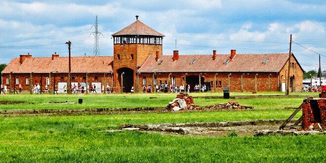 Osvětim, Březinka, solné doly Wieliczka a Krakow