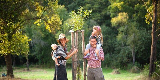 Darujte ovocný strom z benefičního e-shopu Na ovoce
