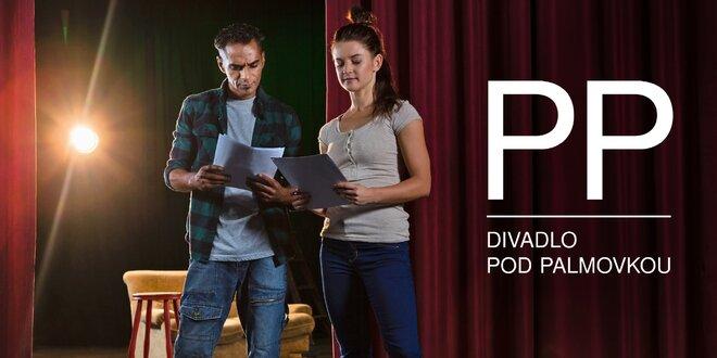 5měsíční herecký kurz Divadla pod Palmovkou