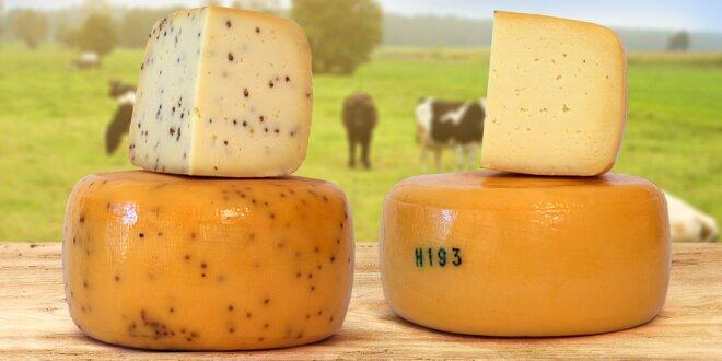 3,5kg bochník horského bio-sýra z rodinné farmy
