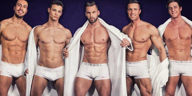 Vystoupení plné testosteronu: Dream Men Show