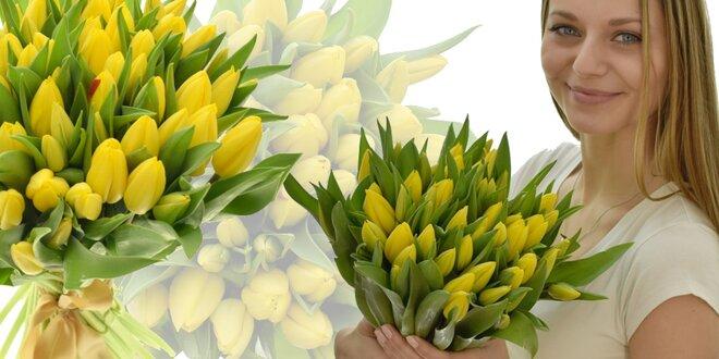 Kytice holandských tulipánů Strong Gold: rozvoz po ČR