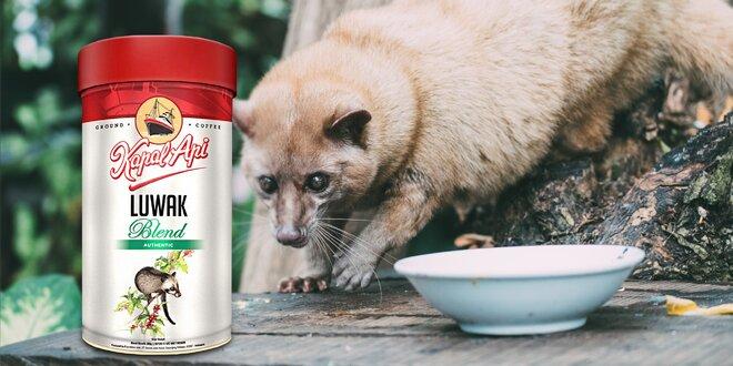 Cibetková káva z Indonésie od Kapal Api