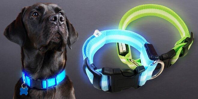 Svítící LED obojky o velikosti 22–60 cm pro psy