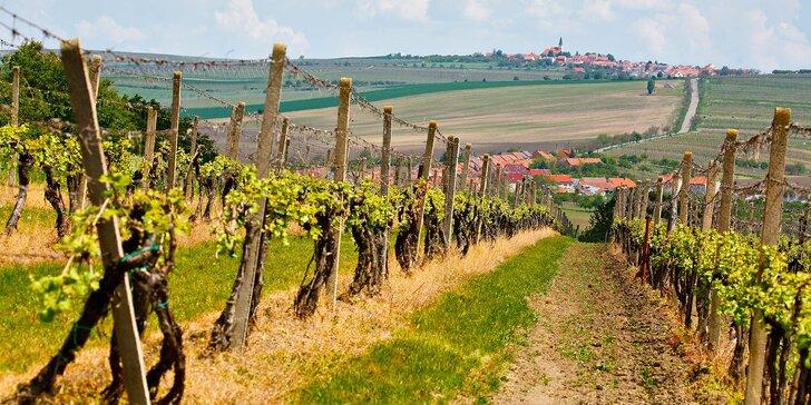 Vinařský pobyt na Slovácku pro dva: wellness i 1l džbán burčáku či mladého vína