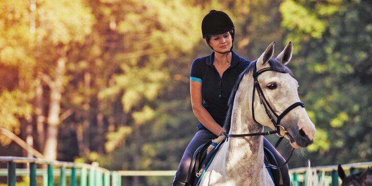 Osedlejte úžasný zážitek: projížďky na koních a ponících pro děti i dospělé