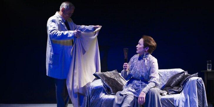Vstupenka na divadelní představení Ještěrka na slunci v divadle v Řeznické