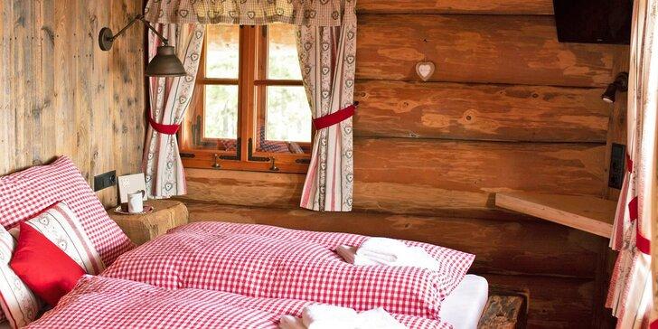 Prima dovolená v Rakousku: chata přímo na sjezdovce, snídaně či polopenze i skipasy