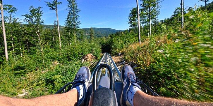 Adrenalinová jízda na Mamutí horské dráze: 3 km lesním terénem i na otevřených pláních