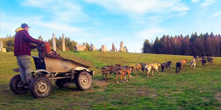 Nezapomenutelná jízda se psím spřežením na čtyřkolce