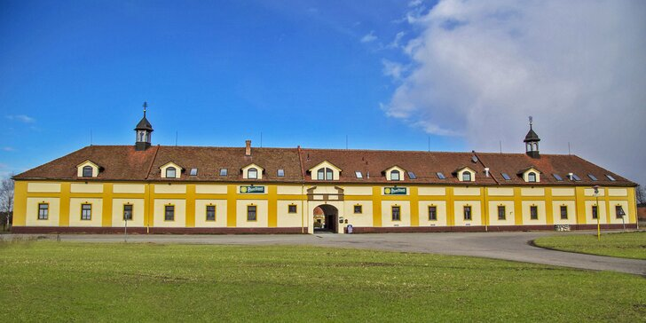 Jižní Morava pro rodiny či romantiky: polopenze a víno i káva se zákuskem