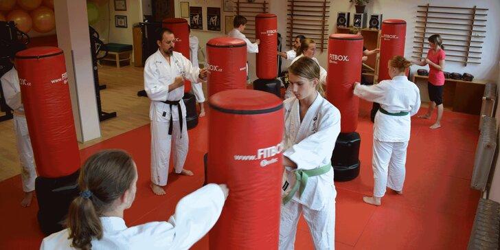 Měsíční permanentka na lekce dle výběru ve Sport Centru Budokan