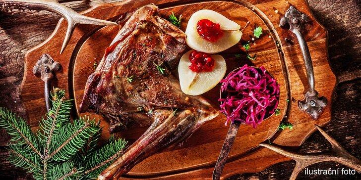 Pobyt u Vranova se zvěřinovým menu, bazénem a vířivkou