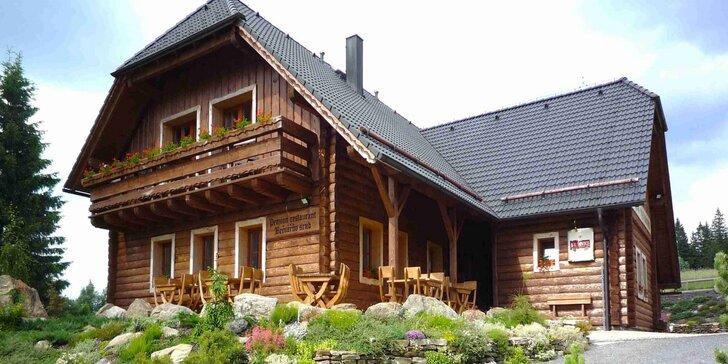 Zimní pohoda ve stylovém horském penzionu na Šumavě: polopenze a privátní wellness