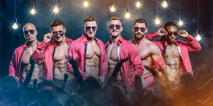 Základní vstup na striptýzovou show Testosterone tour skupiny California Dreams