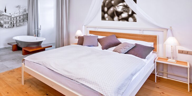Pobyt v apartmá i pokoji na Zámku Svijany: prohlídka, dobrodružná hra i masáž