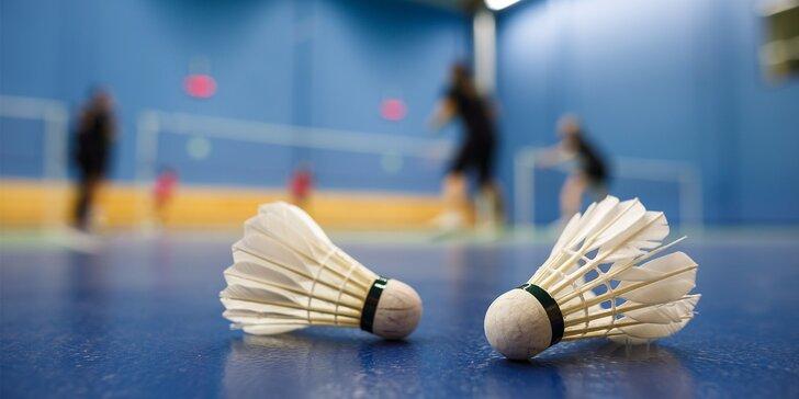Stále v pohybu: Hodina badmintonu pro 2 - 4 osoby