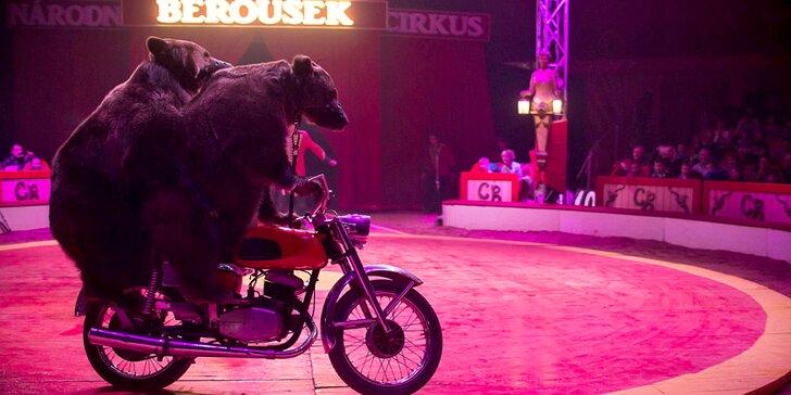 Vstupenky do Národního Cirkusu Originál Berousek